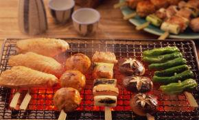 Устройство барбекю и рецепты приготовления газовый камин обогреватель продажа