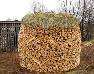 Оригинальный способ хранить готовые дрова